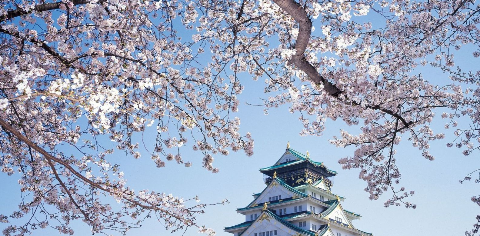 The Hunt For Sakura In 2018 Here Are The Places In Japan