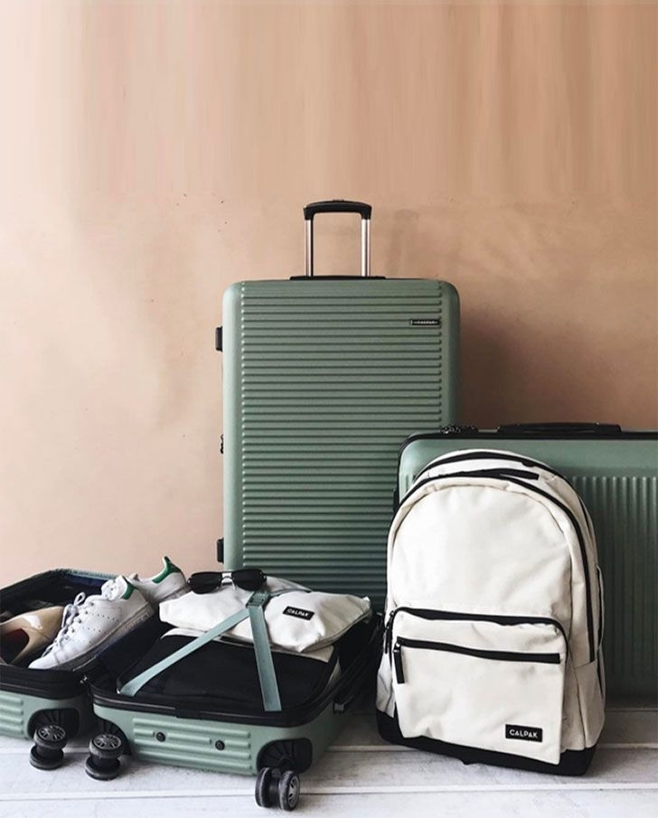10 in-depth reviews of today's best carry on suitcases featuring luggage brands for both business travel & personal_ Calpak, Delsey, Samsonite, Briggs & Riley, Travelpro, eBags and more_.jpg